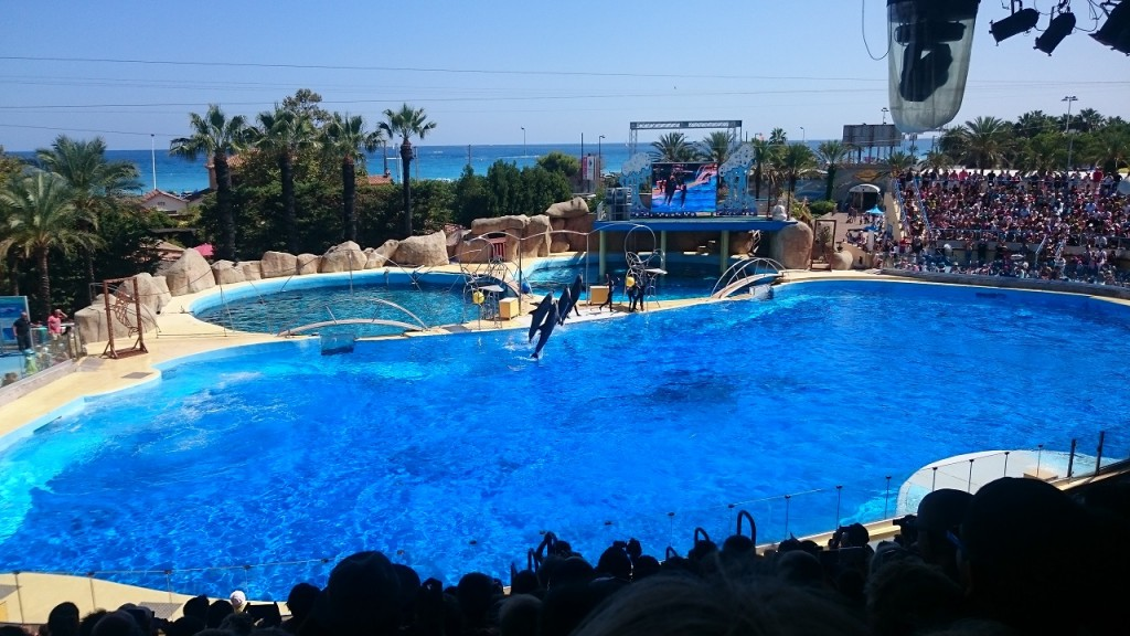 Marineland - Spectacle des dauphins