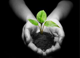 Article éducation : parler de la terre à ses enfants