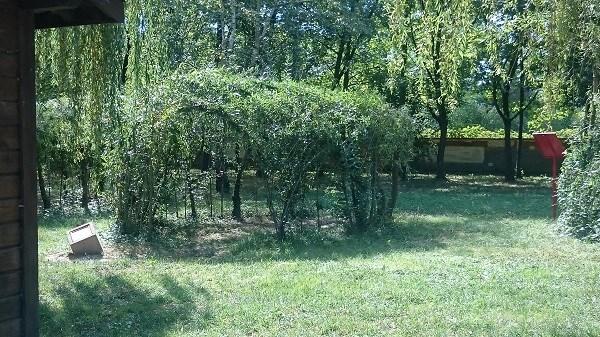 Découverte de l'îLoz de Miribel-Jonage - La cabane naturelle