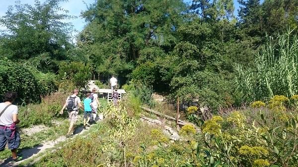 Découverte de l'îLoz de Miribel-Jonage - Le chemin de la visite