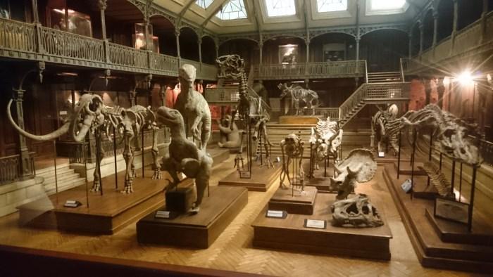 Musée miniature et cinéma de Lyon - Miniature d'un musée de dinosaures