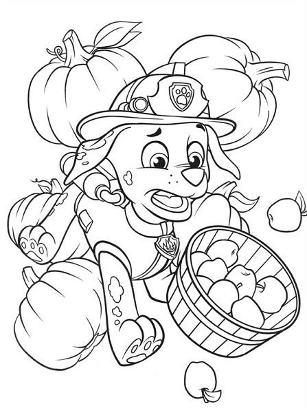 Coloriage et dessin Pat Patrouille - Coloriage de Marcus qui fait tomber le panier de pommes