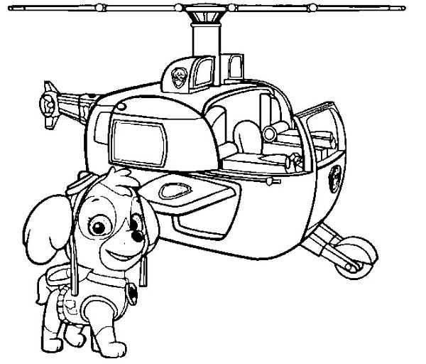 Coloriage et dessin Pat Patrouille - Coloriage de Stella et son hélicoptère