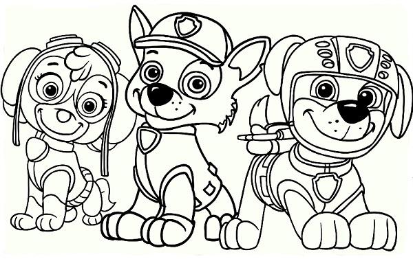 Coloriage et dessin Pat Patrouille - Coloriage de groupe - Rocky, Zuma et Stella