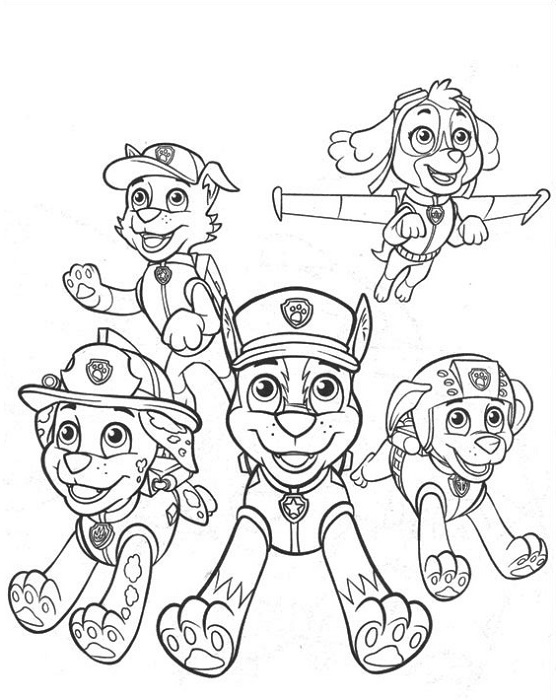 Coloriage et dessin Pat Patrouille - Dessin à colorier de la Pat Patrouille presque au complet !