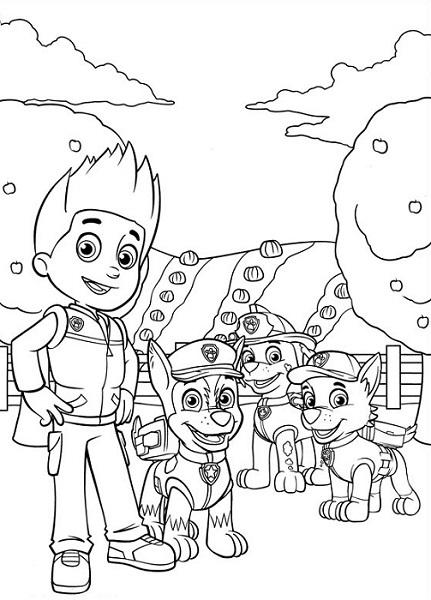 Coloriage et dessin Pat Patrouille - Dessin et coloriage de plusieurs membres de la Pat Patrouille dans un champs