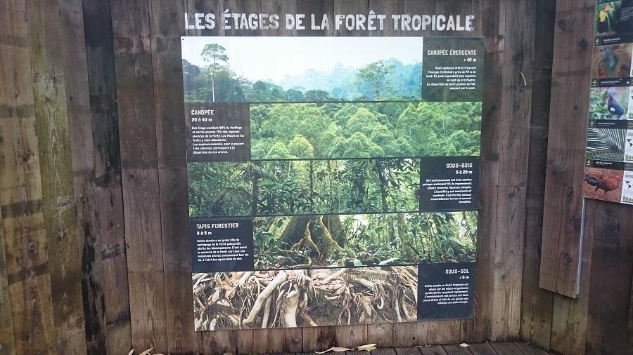 Parc aux oiseaux Villars Les Dombes - découverte avis et visite - La jungle tropicale 2