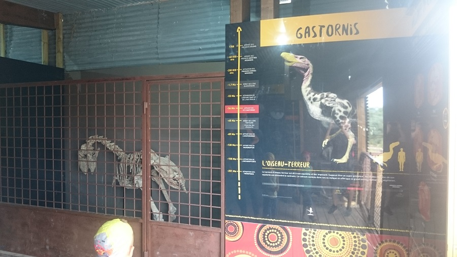 Parc aux oiseaux Villars Les Dombes - découverte avis et visite - Le bush australien 4