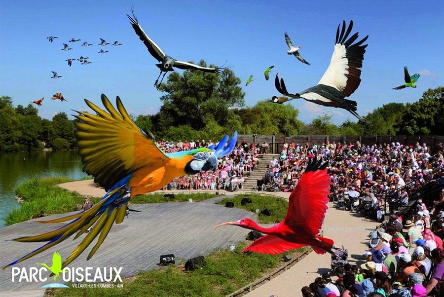 Parc aux oiseaux Villars Les Dombes découverte avis visite