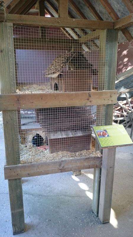 Découverte et avis sur Walibi Rhône-Alpes - Attraction Mini-ferme 1