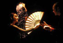 Spectacle « Les merveilles de la magie » - Avis et spoil